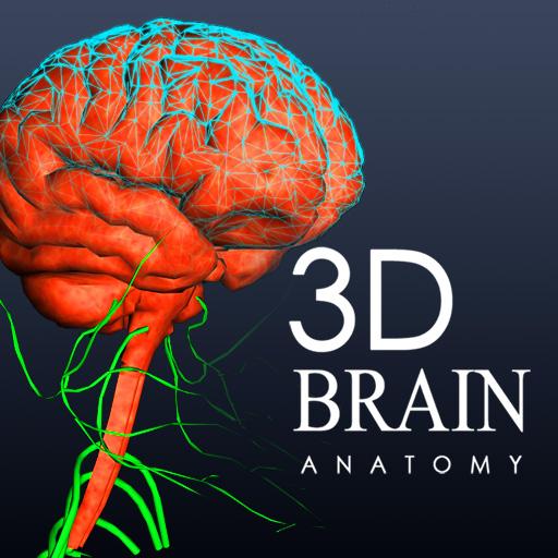 brain mri 3d - photo #10